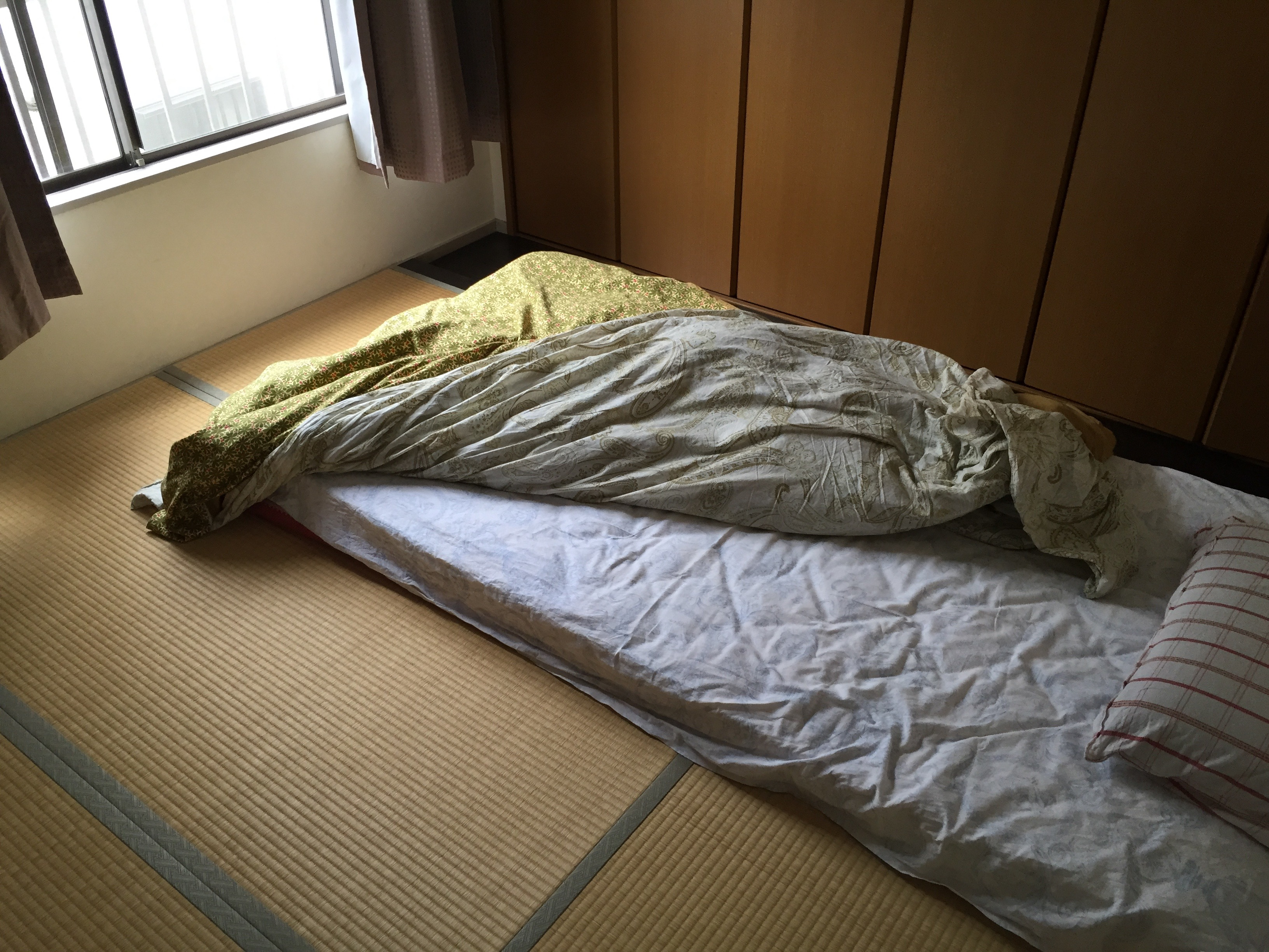 on x a of asian floor the photo futon and covered mats are sleeping re tatami you floors with mat